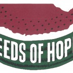 Seeds of Hope liaison needed